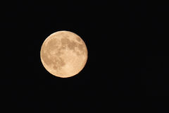 Free Full Moon Stock Images - 15669674