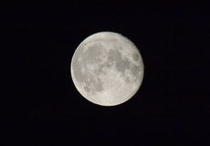 Full Moon. A full Moon on a clear night royalty free stock images