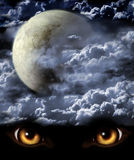 Full moon. Dark series - full moon. Horror in night Royalty Free Stock Image