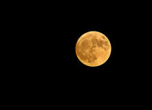 Full moon. In black sky Royalty Free Stock Photography
