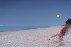 Full moon. Stock Photos