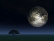 Full moon. Over field with tree - 3d illustration Royalty Free Stock Photo