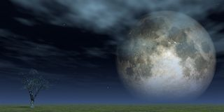 Full moon. Lonely tree at green field and full moon - 3d illustration Stock Images