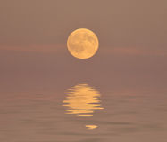 Full moon abstract Royalty Free Stock Image