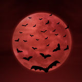 Full moon with bats on red Royalty Free Stock Images