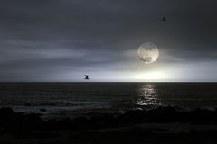 Full moon beach Royalty Free Stock Image