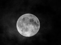 Full Moon. Beautiful Moon Black and White Royalty Free Stock Photography