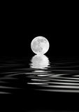 Full Moon Beauty stock photo
