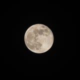 Full Moon Stock Image