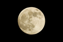 Full moon on the black background Royalty Free Stock Image