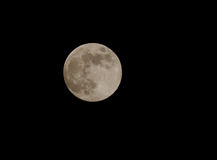 Full moon in a black sky Royalty Free Stock Images