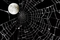 Full moon and blurred spider web Royalty Free Stock Photography