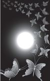 Full moon butterflies. Night scene with  full moon and butterflies flying in circular motion Stock Photos