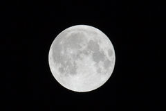 Full Moon On a Clear Night Stock Image