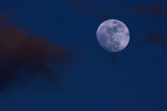 Full Moon & Clouds with copy space Royalty Free Stock Images