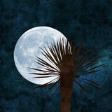 Full moon collage Royalty Free Stock Photography
