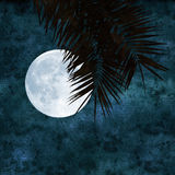 Full moon collage Royalty Free Stock Photo