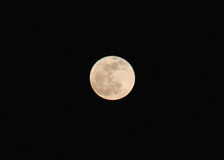 Full Moon. A full moon on a cool spring evening Royalty Free Stock Images