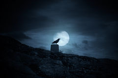 Full moon crow. Crow over a geodesic mark against a misty full moon sky royalty free stock image