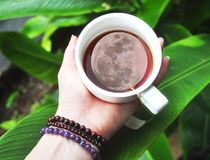 The full moon in a cuppa tea. This woman holds the power of the full moon in her cup of tea. Wearing beaded bracelets and in a tropical landscape of Costa Rica Stock Image