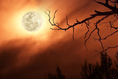 Full moon in dark red sky Royalty Free Stock Photo