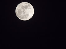 Full moon in the darkness sky Royalty Free Stock Photography