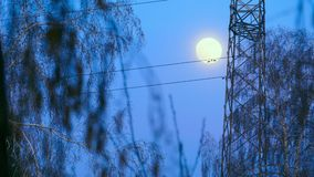 Full moon. In evening sky and mast stock footage