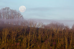 Full Moon with Fog Above The Wooded Hill Royalty Free Stock Photography