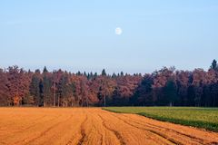 Full moon. In the evening over farmland Stock Image