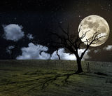 Full moon halloween background Stock Photo