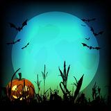Full moon at Halloween night Stock Images