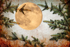 Full moon magic night Stock Images
