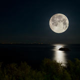 Full Moon and moonlight on night sea Royalty Free Stock Photo