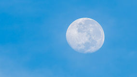 Full moon in the morning. Royalty Free Stock Photography