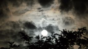 Full Moon Moves in the Night Sky through Dark Clouds and Trees. TimeLapse