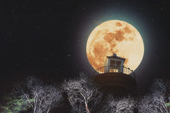 Full moon at night with lighthouse on clear sky with stars, and dead branches stock illustration