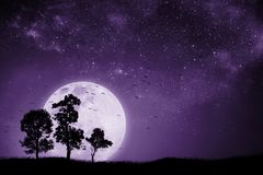 Full moon night With the shadow of a tree And birds that fly back to the nest. Mixed media. Proton purple royalty free stock photos