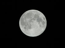 Full moon. Moon in one day which is especially great. It is able to focus the contour to the point of being able to see the outline of the moon is not quite Stock Photos