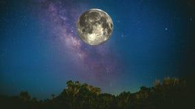Full moon orbiting through the fantastic night sky above tree tops