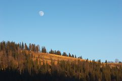 Full moon over the forest Royalty Free Stock Photography