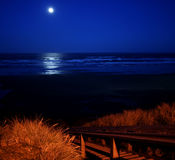 Full moon over Newport Beach. A full moon over Newport Beach Oregon with a tall sea grass in the foreground Royalty Free Stock Image