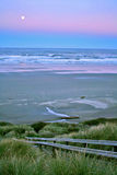 Full moon over Newport Beach. Sunrise with a full moon over Newport Beach Oregon with a tall sea grass in the foreground Royalty Free Stock Images