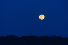 Full moon over ruwenzori mountains Stock Images