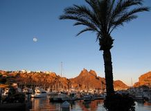 Full Moon Over San Carlos Marina, Mexico. A palm tree frames the marina @ San Carlos Nuevo Guaymas, Mexico on the Gulf of California; Tetakawi Peak rises in the stock photography