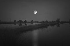 Full moon over the water field Stock Images