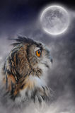 Full moon and owl. In the fog Stock Photo