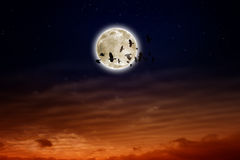 Full moon, ravens Stock Photography