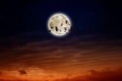 Full moon, ravens stock photography