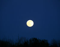 Full moon rising Royalty Free Stock Photos