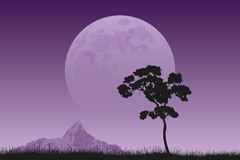 Full moon rising. Picture of a tree black silhouette with mountain peak and full moon on background, peaceful and silent landscape, nature beauty Royalty Free Stock Photo